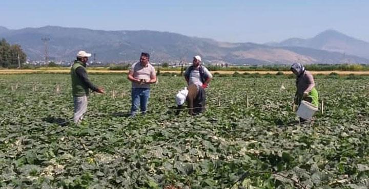 İlçe Tarım Müdürü Öcal'dan Üreticilere Ziyaret