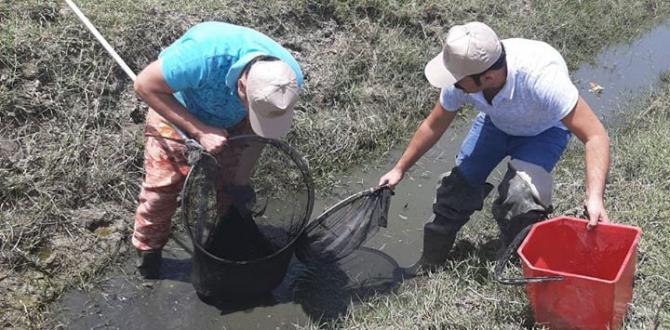 Amik Ovası Sulama Kanallarında Sıkışan Balıklar Kurtarıldı