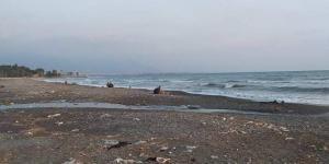 Payas Ve Dörtyol Sahili Kıyısında Çirkin Görtüler