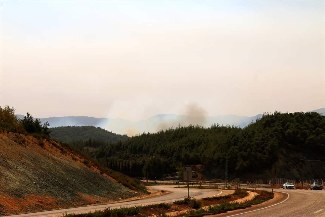 Suriye'Nin Hatay Sınırında Orman Yangını Çıktı