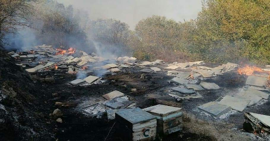 Samandağ'Da Ki Yangının Çıkış Nedenı Ve Hasarı Belli Oldu