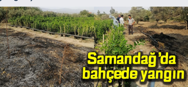 Samandağ'Da Bahçede Yangın