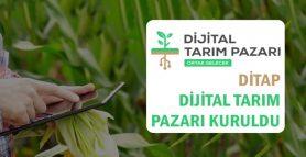 Dijital Tarım Pazarı Sistemi Hayata Geçti