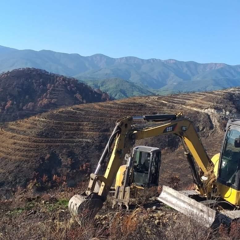 Üç İlçede Yanan Ormanlık Alana 2 Milyon Fidan Dikilecek