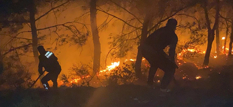 Belen'De Havai Fişek Ormanda Yangına Neden Oldu