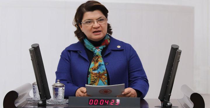"""Suzan Şahin Vatandaşa """"Çakal"""" Diyen Kaymakamı Meclis Gündemine Taşıdı"""