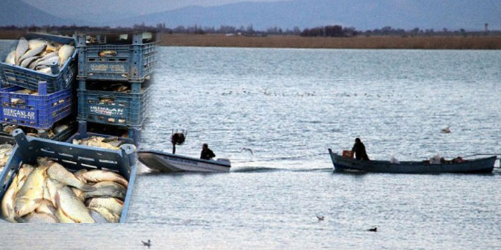 Yasa Dışı Balık Avcılarına 13 Bin TL Ceza Kesildi